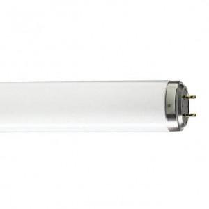Lempa d.šv. G13 36W/840 TLD Philips
